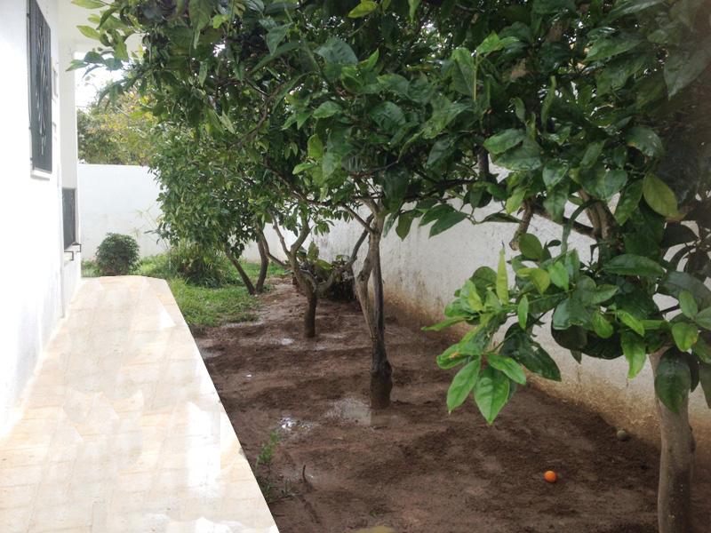 Villa de plain pied for Le jardin morat